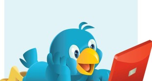 How to Create Twitter Bio That Attracts More Followers